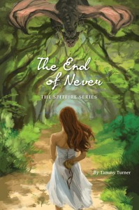 End Of Never Cover v.2